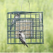 Duncraft Squirrel-Proof Suet Sanctuary Feeder (2 suet cakes)